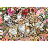 Floral Cats